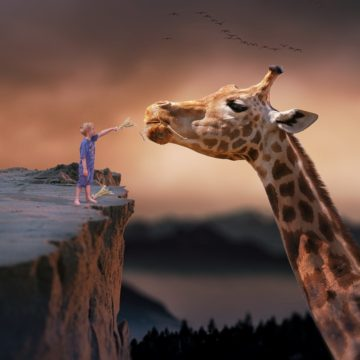 Donal Mac Manus: The Sculptor and the Giraffe