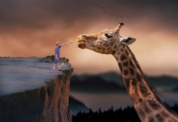 Donal Mac Manus: The Sculptor and the Giraffe
